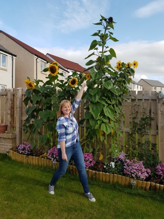Excuse the daft pose to show the scale of the flowers!